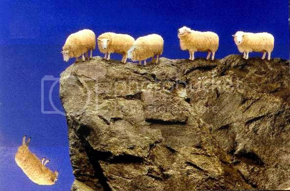 OBAMA PLAN SHEEPLE OFF THE CLIFF 